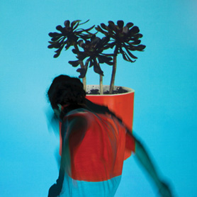 Local Natives – Sunlit Youth